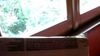 Отель Вилла Итали в Римини, Италия(Видео с сайта http://ОльгаМорозова.рф., 2012-01-05T20:27:23.000Z)