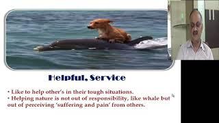 Lac Delphinum (Dolphin)