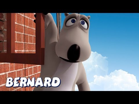 Bernard Bear | Falling Off The Window AND MORE | Cartoons for Children