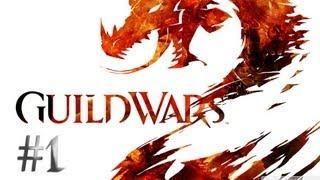 Let's Play Guild Wars 2 Solo Human Guardian Part 1