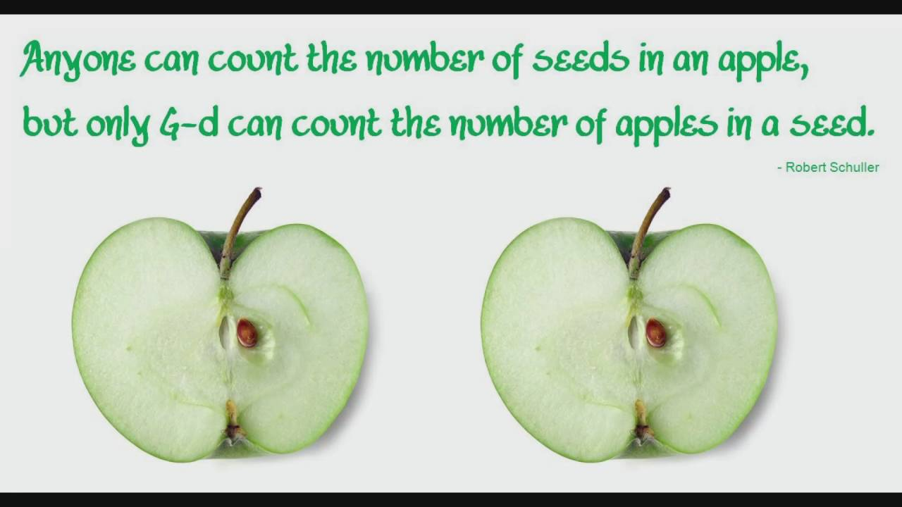 anyone can count the number of seeds in an apple but only god can