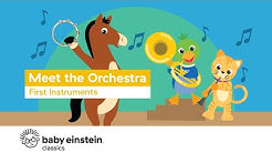 Musical Instrumentals For Kids to Know | Meet The Orchestra: First Instruments | Baby Einstein