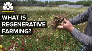 Will Carbon Credits Change Farming?