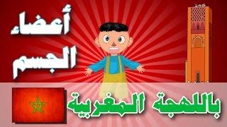 Human Body Parts in Moroccan dialect - Atfal TV | أعضاء الجسم باللهجة المغربية - أطفال تيفي