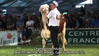 Concours National Montbéliarde 2013 : Super Mamelle et Grande Championne