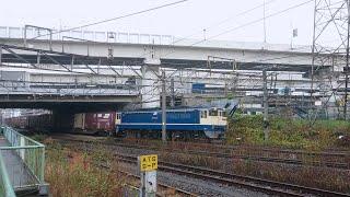 [長編成貨物×コンテナ満載] EF65形2000番台国鉄色 コキ20両連結 南武線浜川崎支線浜川崎(JI-54)横通過