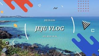 8월에 다녀온 제주도 여행 브이로그 1편 (JEJU V…