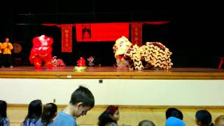 Chinese New Year Colorado Springs