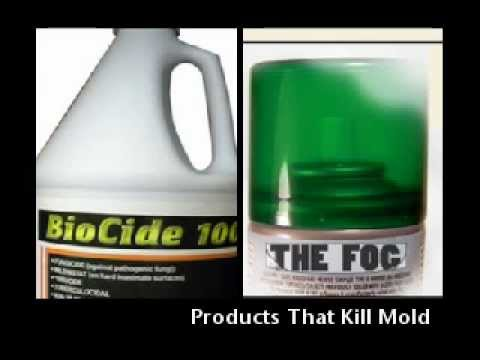 Mold Cleaning Products 803 233 4353