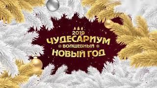 видео Идеи сценариев на новый год 2019