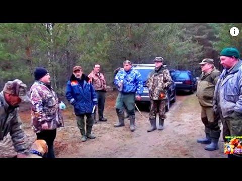 Весенние полевые испытания гончих собак в Нижегородской области .