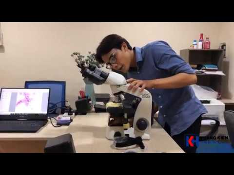 Kính hiển vi CX23 Olympus Trên tay lưu ý khi sử dụng kính hiển vi