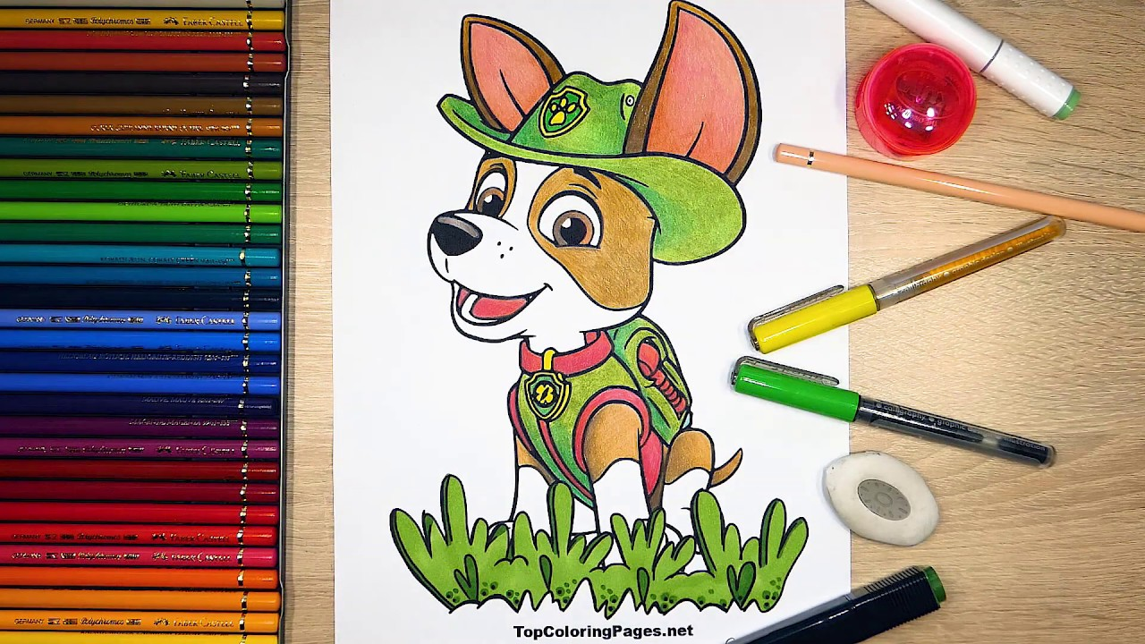 PAW Patrol coloring pages for free - Topcoloringpages.net