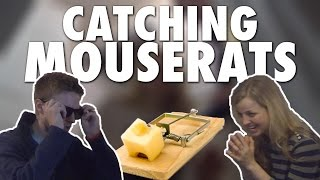 CATCHING MOUSERATS! (Modern Marriage Moments)