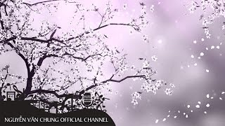 Hoa Anh Đào Trong Gió (Karaoke)