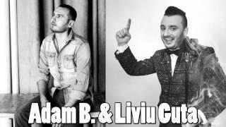 Adam B si Liviu Guta - Ai avut tupeu ( Oficial Audio )