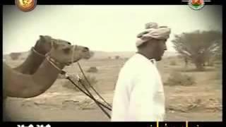 فن الونة العمانية. اداء : سعيد بن خليفة المعمري. ابداع