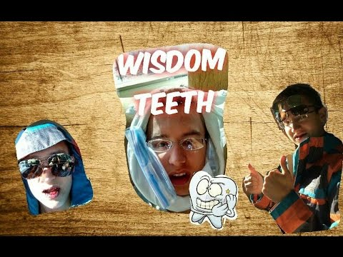 Wisdom teeth Reaction Adventure