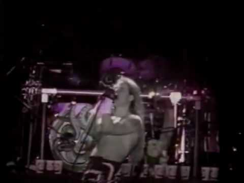Red Hot Chili Peppers - Me And My Friends (snippet) [Live, Lollapalooza - Canada, 1992]
