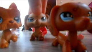 LPS Dream episode 1