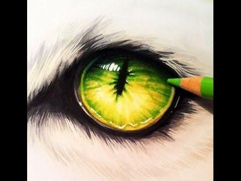 dibujo ojo de lobo - YouTube
