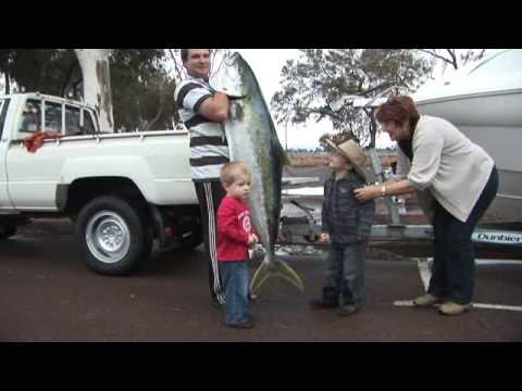 Port Augusta Kingfish 45kg