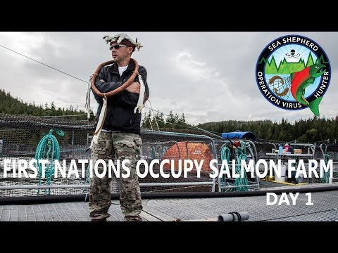 Op Virus Hunter: First Nations Occupy Salmon Farm Day