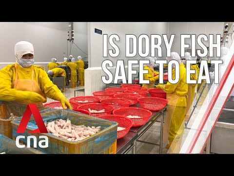 The Truth Behind Dory Fish | Undercover Asia | Full Episode