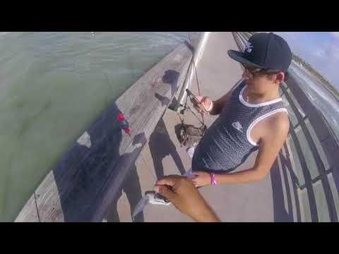 Fishing Corpus Christi / Indian Point ...