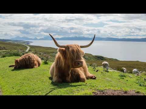 Scotland 2017 - 4K