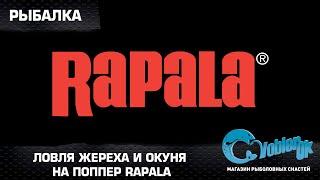 Ловля жереха и окуня на поппер Rapala