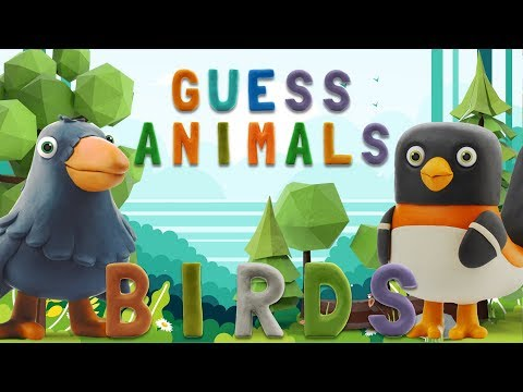 GUESS ANIMALS -