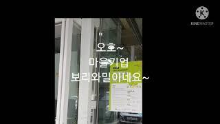 대전마을기업 보리와밀 우리밀수제쿠키