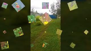 Короткие клипы про цветы