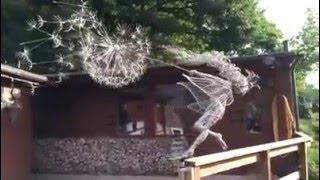 �������� ���� скульптура  от талантливого Робина Уайта ������