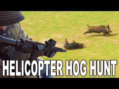 HELICOPTER HOG HUNT 50+ Kills