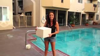 Kelly Rossi's Ice Bucket Challenge (Jake Brown, Laura Gomez, Adrienne Maloof)