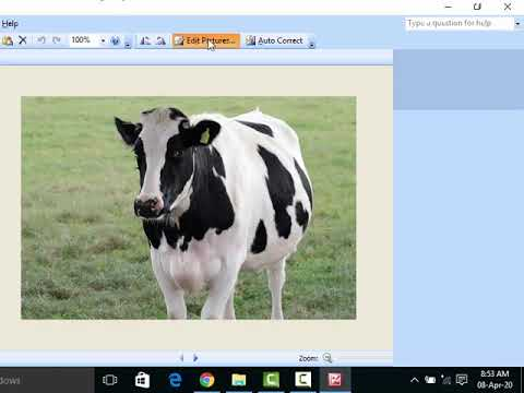 Write Webpage In HTML And CSS