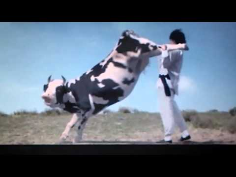 Jackie Chan fighting with a cow