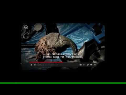 Living Dinosaur Killed By US 'Military Dolphins'. 'Government Cover Up.(PROOF)