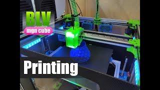 BLV mgn Cube 3D printer - Printing...