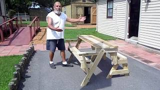 Homemade picnic table-bench combo