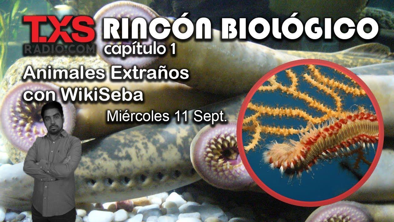 Animales Extraños | Rincón Biológico Cap 1 | TXSRadio.com