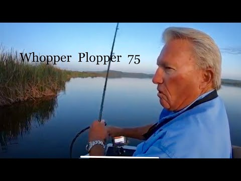 It's A Great Lure-Whopper Plopper 75