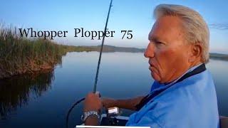 It's a great lure-Whopper Plopper 75