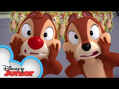 All Goofed Up! | Chip 'N Dale's Nutty Tales | Disney Junior