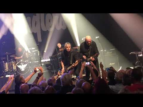 The Stranglers Performing in Wellington NZ
