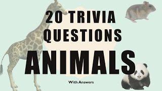 20 Trivia Questions (Animals) No. 1