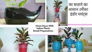 घर सजाने का आसान तरीका - इंडोर प्लांट्स   Home Decor With Indoor Plants