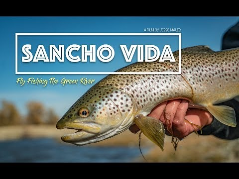 SANCHO VIDA Fly Fishing The Green River Wyoming